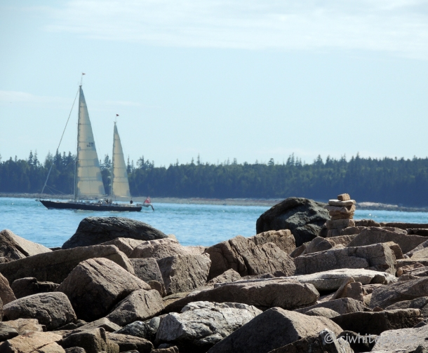 Natural Granite Seawall at Acadia National Park
