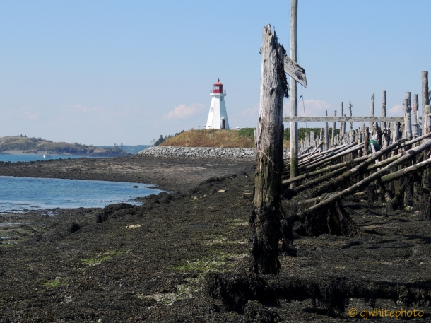 East Quoddy Head light at low tide