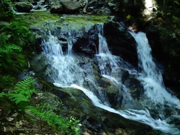 """""""Emerald Falls"""""""
