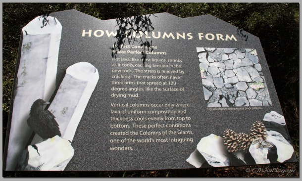 How Columns Form