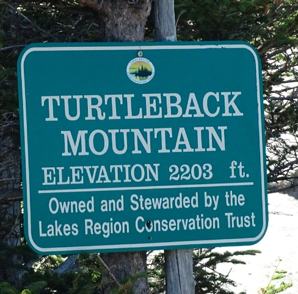 Turtleback Mountain